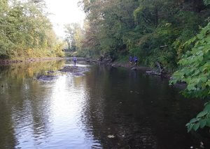 keeping our watershed clean