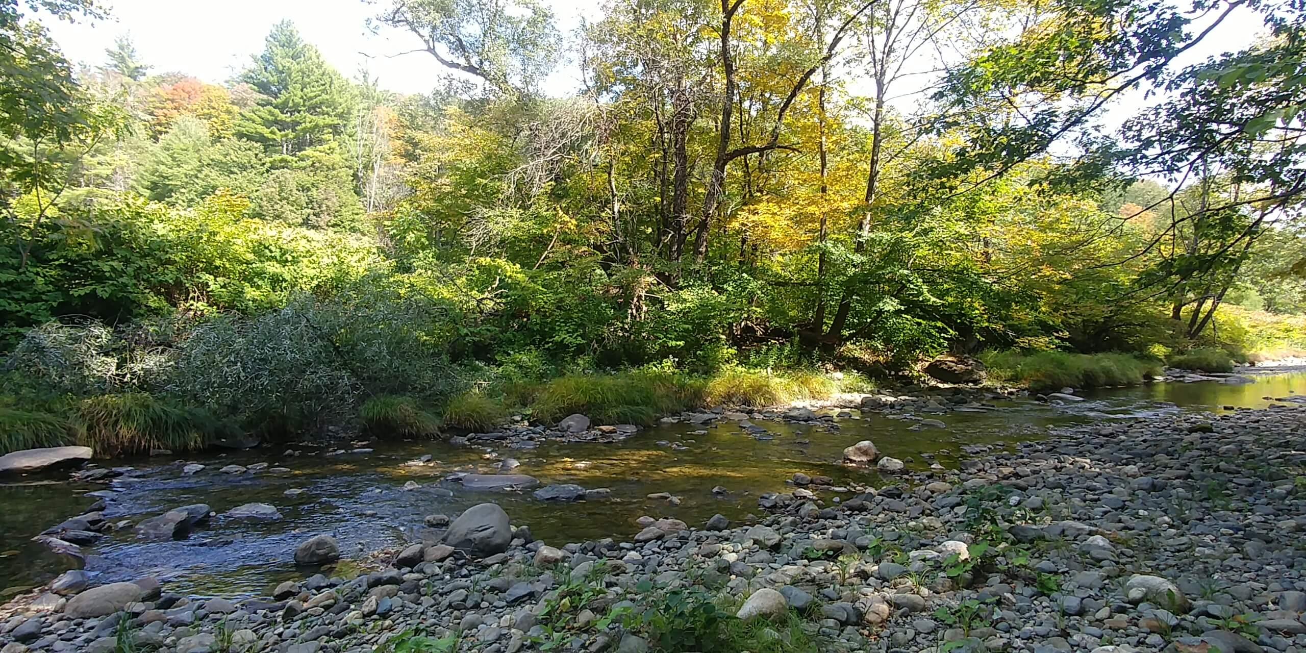 Green River in September, Guilford, VT