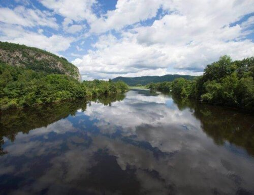 WATER QUALITY PARTNERS TO ASSIST VERMONT STATE TACTICAL BASIN PLANNING