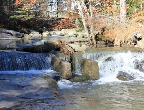 Cold Brook dam removal completed