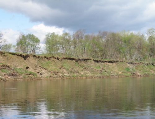 CRC Comments on GRH Study Reports – Erosion, Shad, American Eel