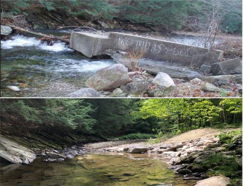 Derelict Dam in Grafton Removed Thanks to State Clean Water Block Grant