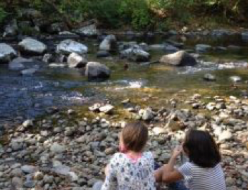 "The Flow of ""Big Ideas"": River Inquiry at Smith College Campus School"