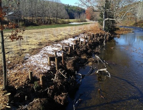 $2.5 million and 58 river restoration projects have improved health of Connecticut River