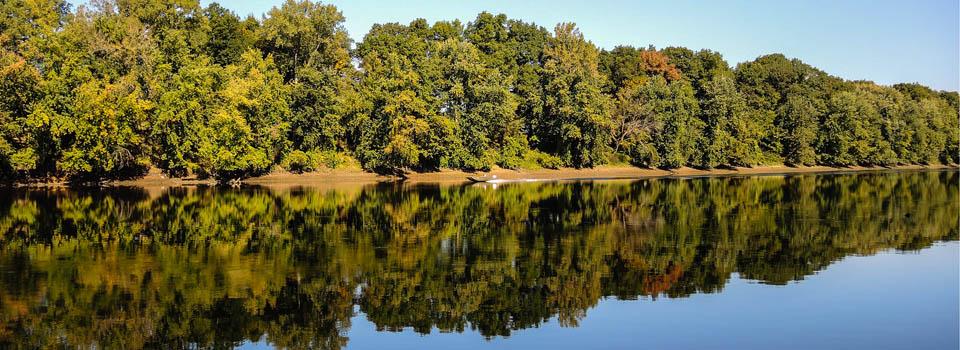 Slider-CT-River-bank-near-Third-Island-S2S-2014-1